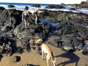 Vogue 1236: beach test drive