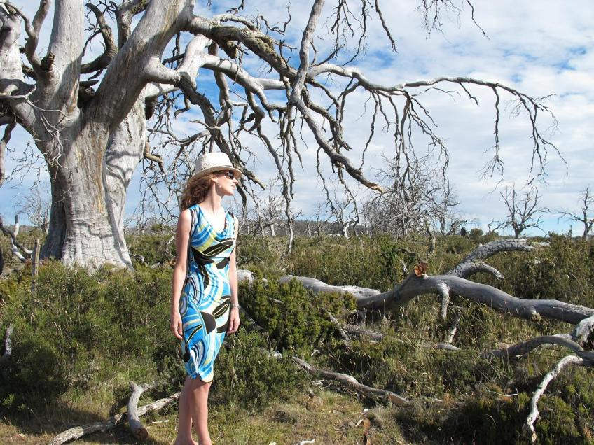 Maria Denmark day-to-night dress - take 2