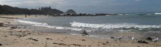 Shelly Beach, Port Macquarie - pretty even when it's overcast