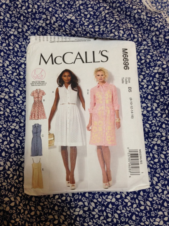 McCalls 6696 - the pattern
