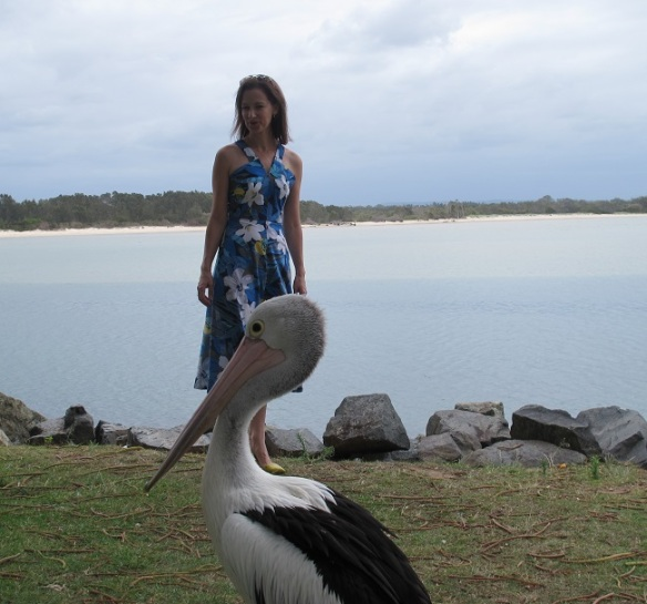 Photobombed by a pelican
